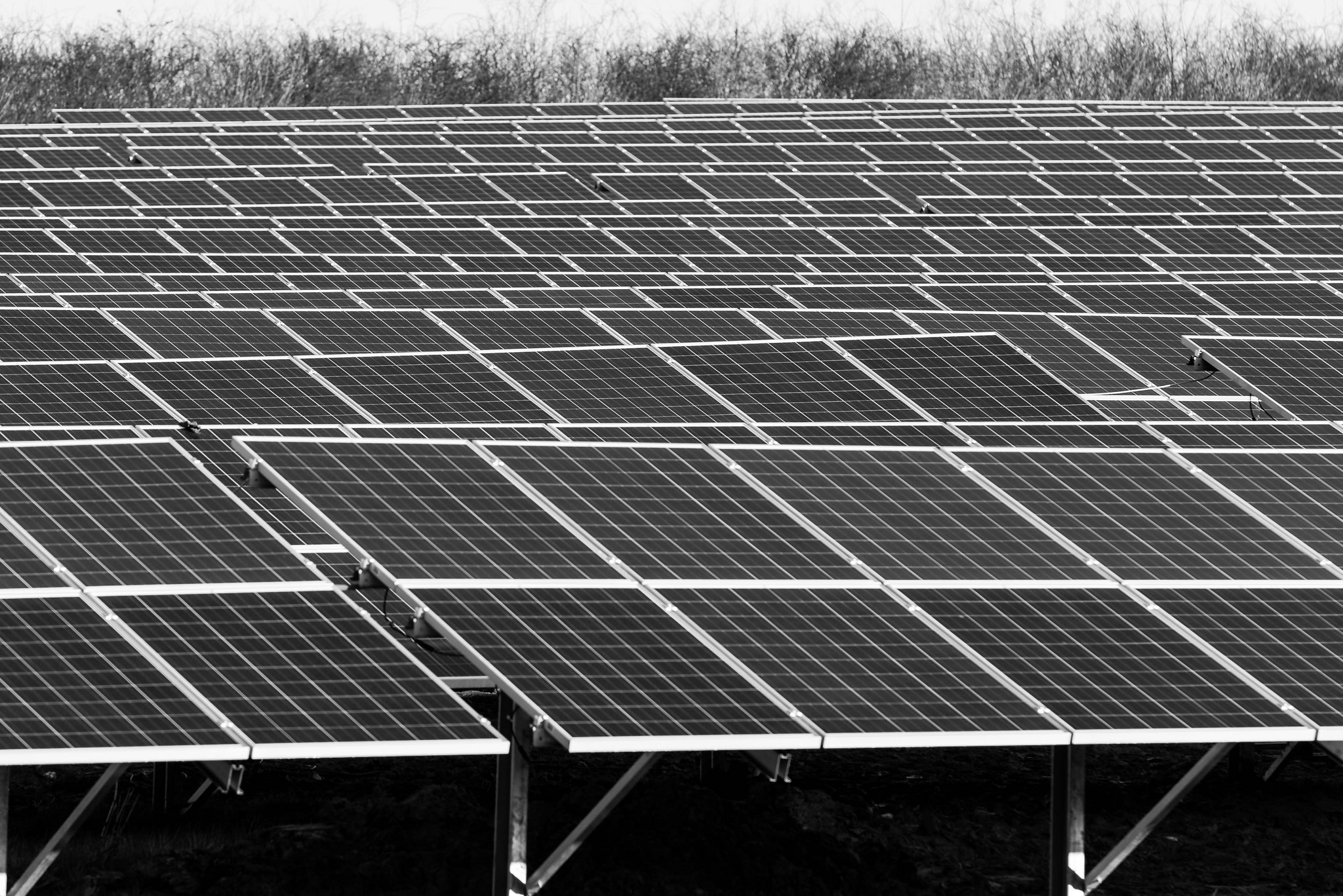 Solar panels started to be installed at the Dubai Farm back in 2016. Image: Gerry Machen / Flickr