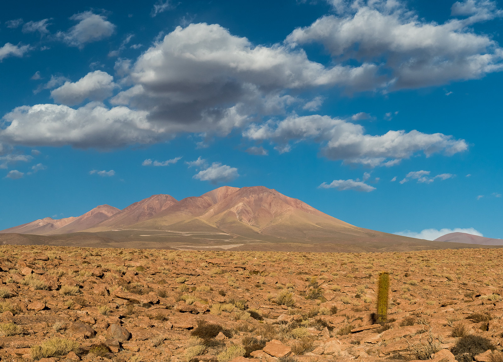Valhalla's development of 561MW PV and 300MW of energy storage in Chile's Atacama should reach commercial operation in 2025 (Credit: Flickr / Alessandro Caproni)