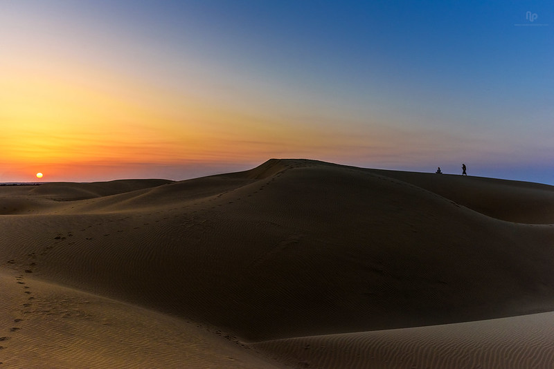 Sunset in the Thar Desert near Jaisalmer, a district in the far west of Rajasthan. Credit: Flickr/ Navaneeth Kishur