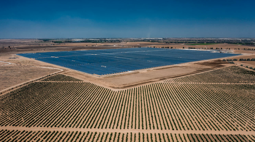 Israel's largest solar plant owned by Shikun & Binui Renewable Energy. Credit: Belectric