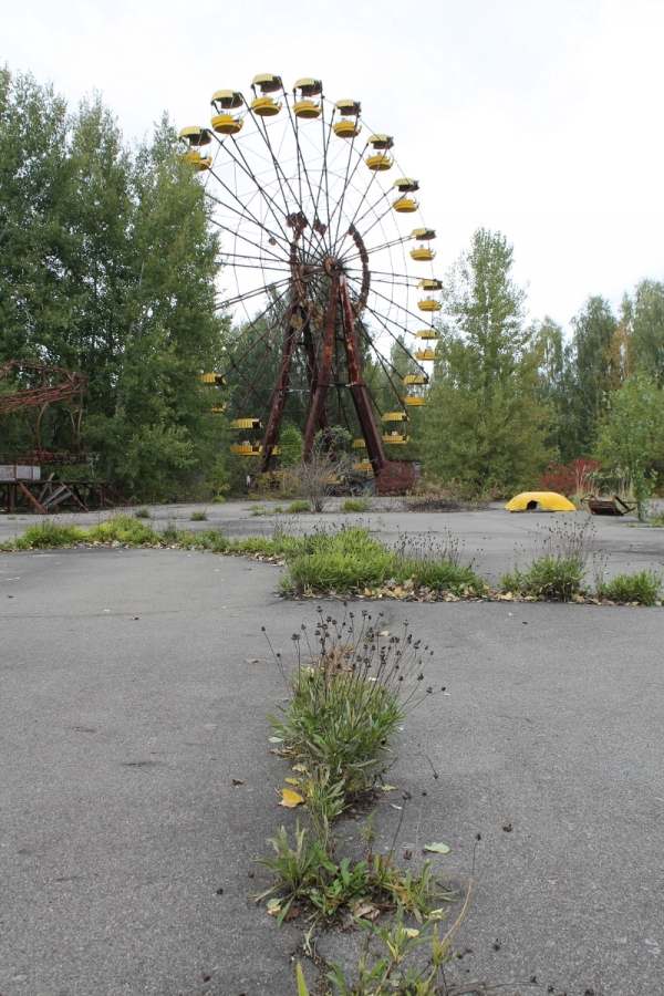 The rusting Ferris wheel in the town's fairground, a note of false cheer amidst the decay.