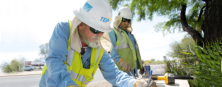 The deal is under TEP's community solar programme which allows customers to purchase blocks of solar electricity produced at PV plants constructed or owned by TEP or by a private developer that operates the plants under a PPA. Source: Tucson Electric Power