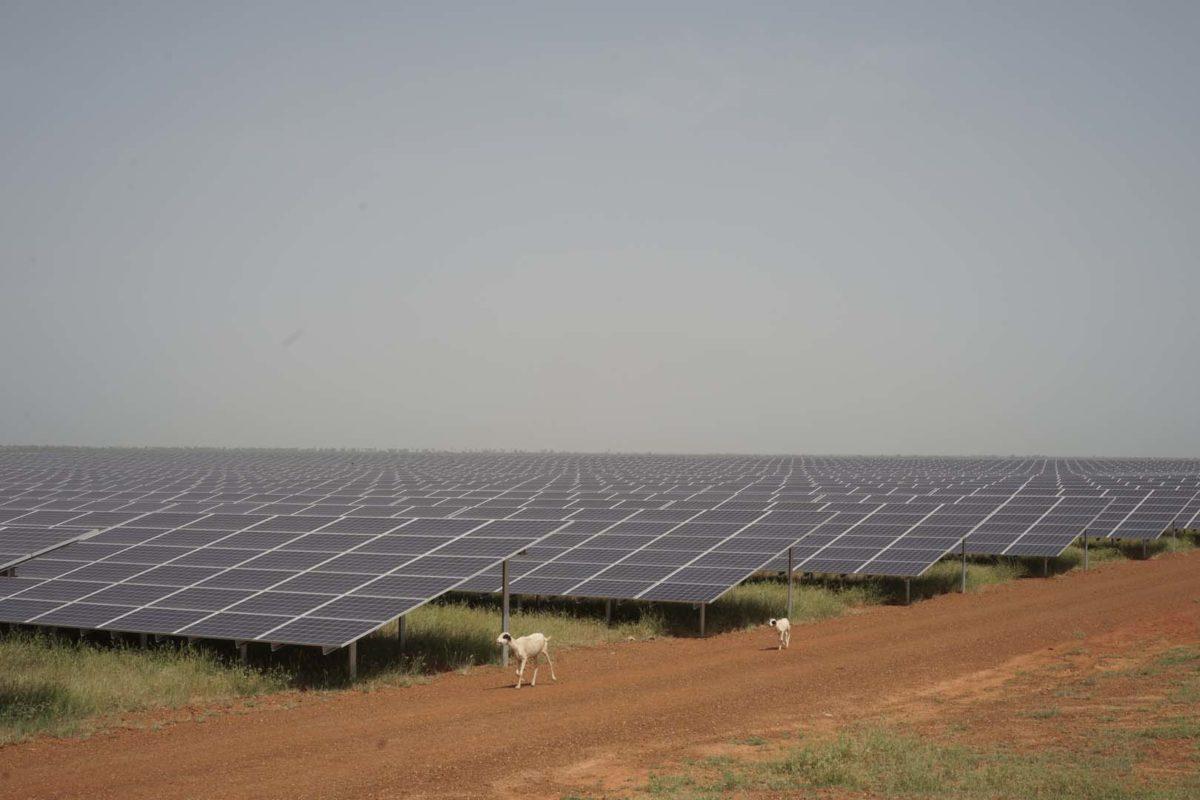 Senergy 2 in Bokhol, Senegal. Source: GreenWish Partners