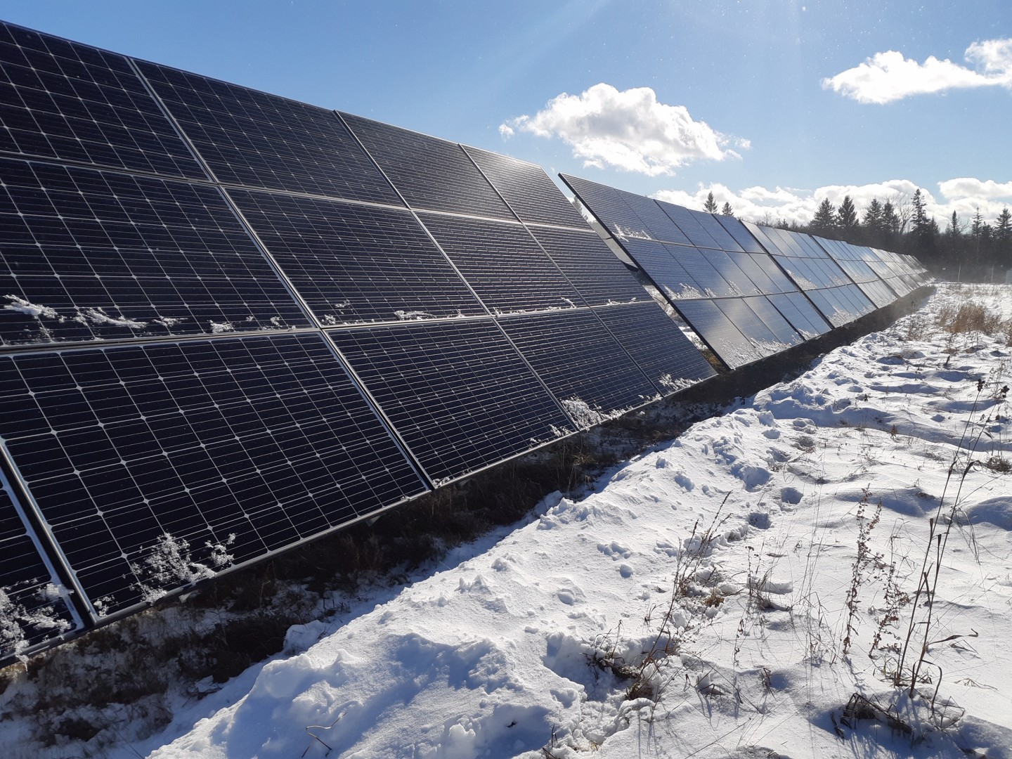 Elemental Energy Inc,, the British Columbia-based renewable energy developer and investor, owns the installation, which will stand as the first merchant PV project located in Alberta. Image: GP Joule