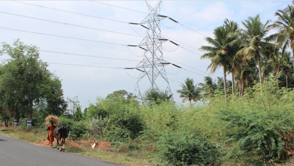A transmission line in the South Indian state of Tamil Nadu. Credit: Tom Kenning