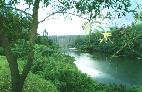Kolkiwadi Dam in Maharashtra part of the Koyna project. Credit: Nichalp. Wikimedia Commons