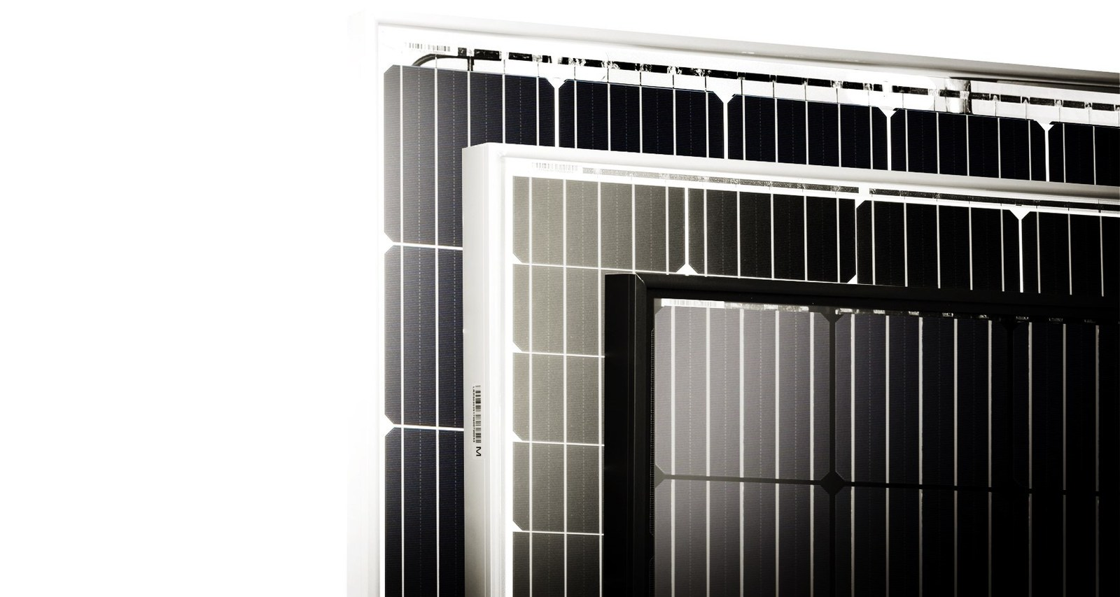 PV Tech's analysis has highlighted that LONGi Solar was one of only four PV manufacturers that achieved a clean sweep of the four reliability tests with its HiMO 1 mono-PERC module. Image: LONGi Solar
