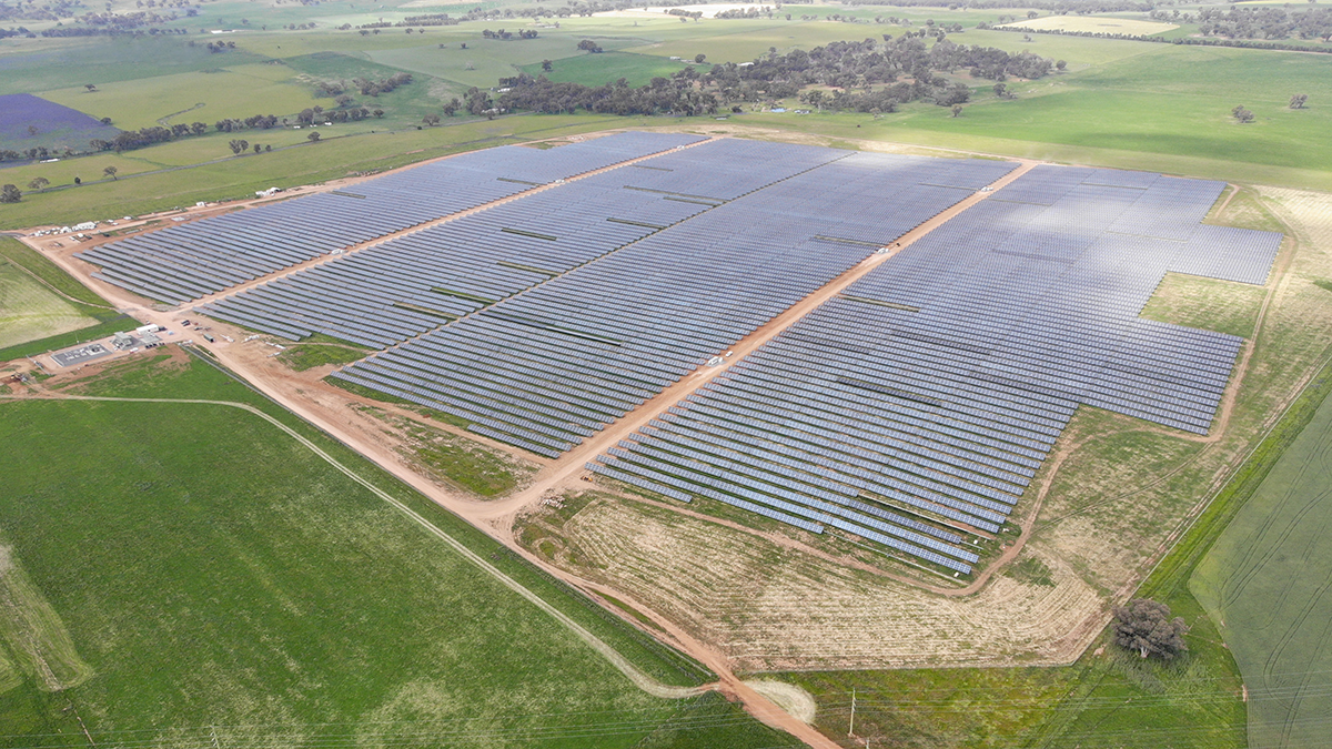 VivoPower subsidiary J.A. Martin's completed 39MWdc Molong Solar Farm. Image: VivoPower.