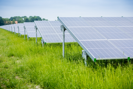 Earlier this year, Nuon announced that it is planning to develop a 70MW PV portfolio at six wind farms located across the Netherlands. Image: Nuon