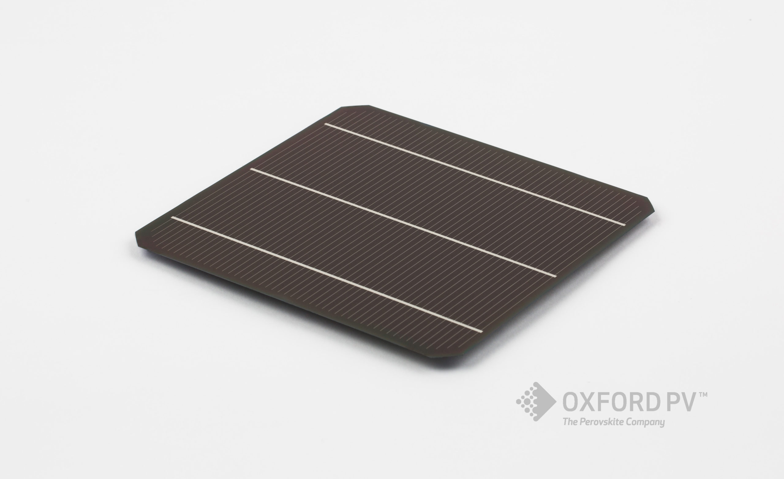 The partnership brings perovskite solar cell technology a significant step closer to commercialisation. Credit: Oxford PV
