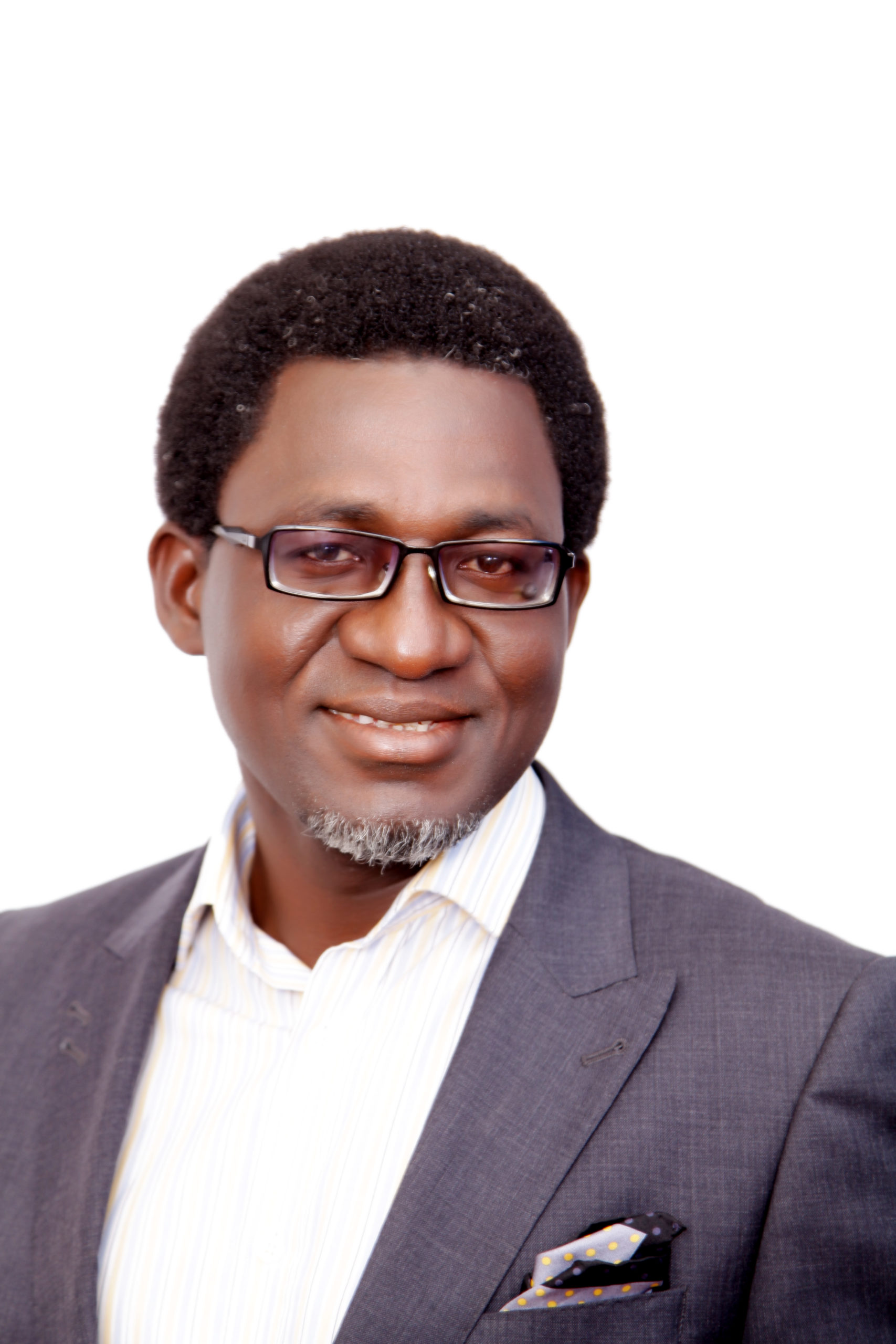 Segun Adaju, president of the Renewable Energy Association of Nigeria and CEO of Consistent Energy