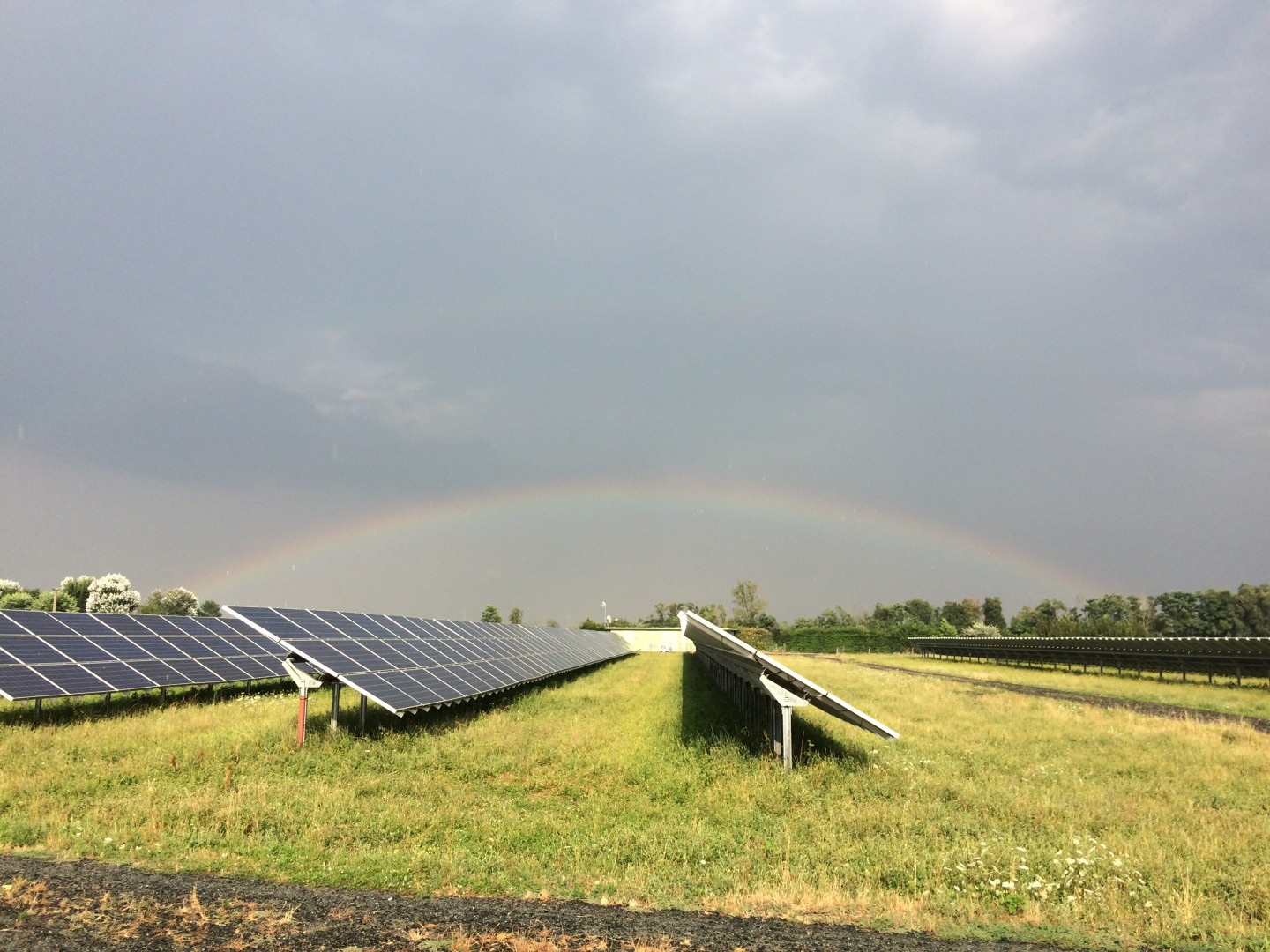DSM's AR coatings can be applied on older PV panels in existing solar parks that use modules without an AR coating. Image: DSM