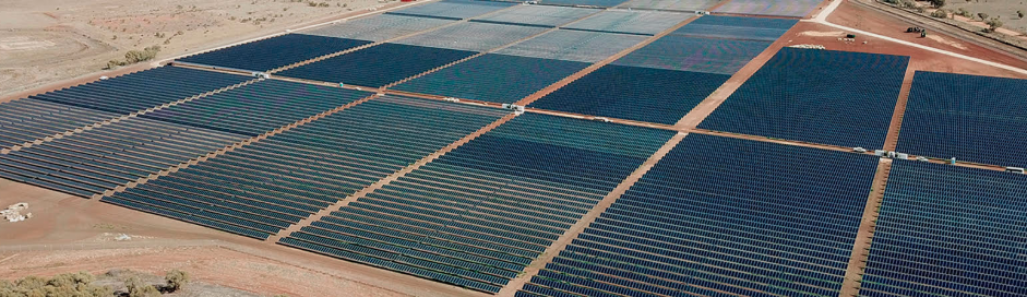 EnergyAustralia will take 70% of the solar farm's energy output. The remainder will be sold directly to the market. Credit: Neoen