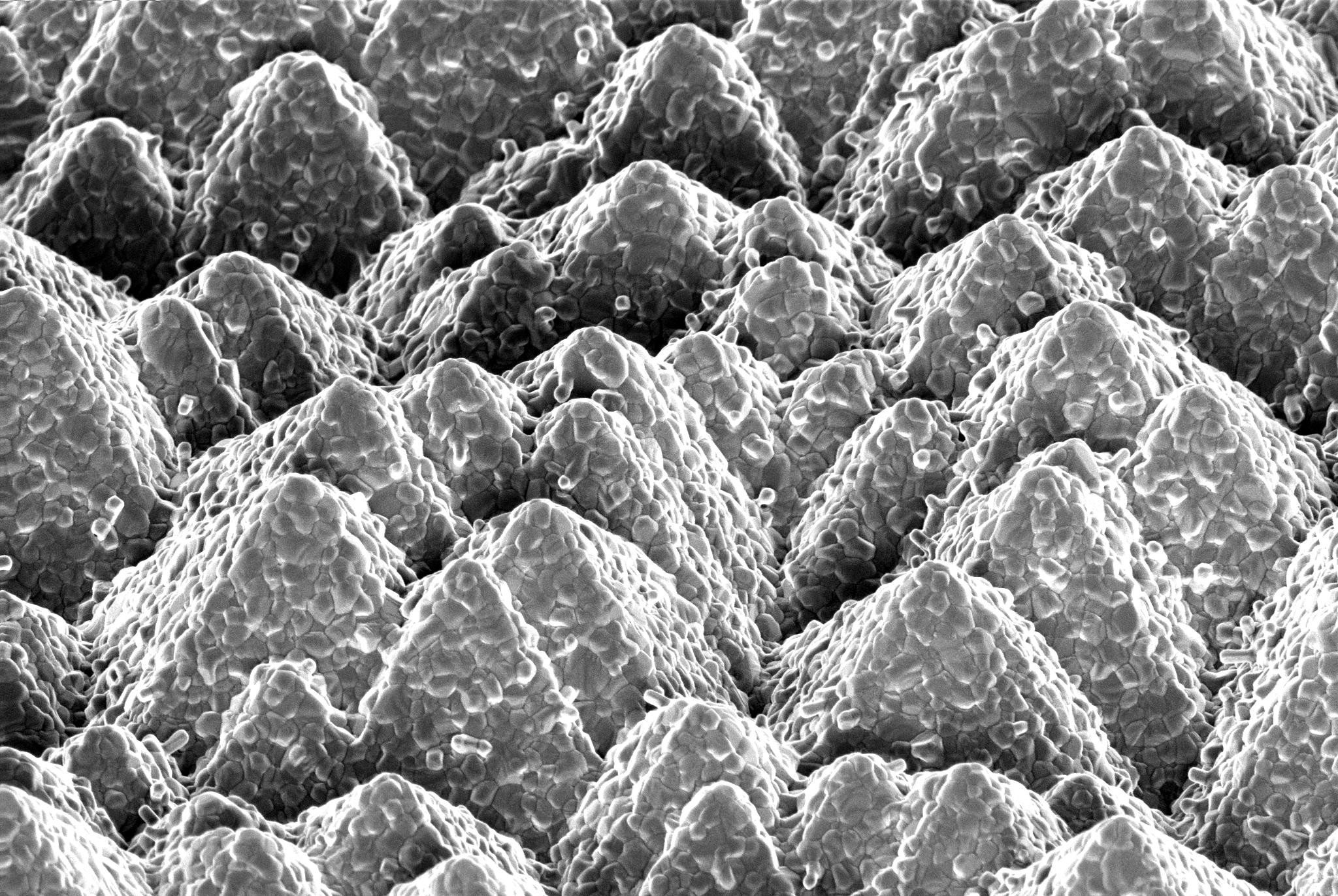 Using an evaporation method to form an inorganic porous base layer that fully covers the pyramids was developed, enabling it to retain the liquid organic solution that is then added via spin-coating. Image: EPFL and CSEM