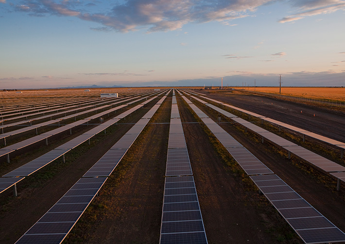 The Bomen solar project will create over 200 construction jobs over the next year, and will power more than 30,000 homes once completed. Image: NSW Government