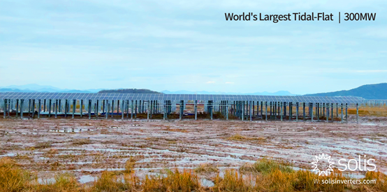 The first phase of the tidal flat project. Image: Ginlong Solis.