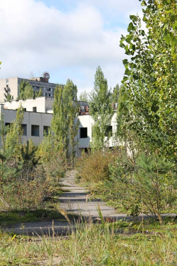 Today, Pripyat has returned to nature, its main square choked with vegetation.