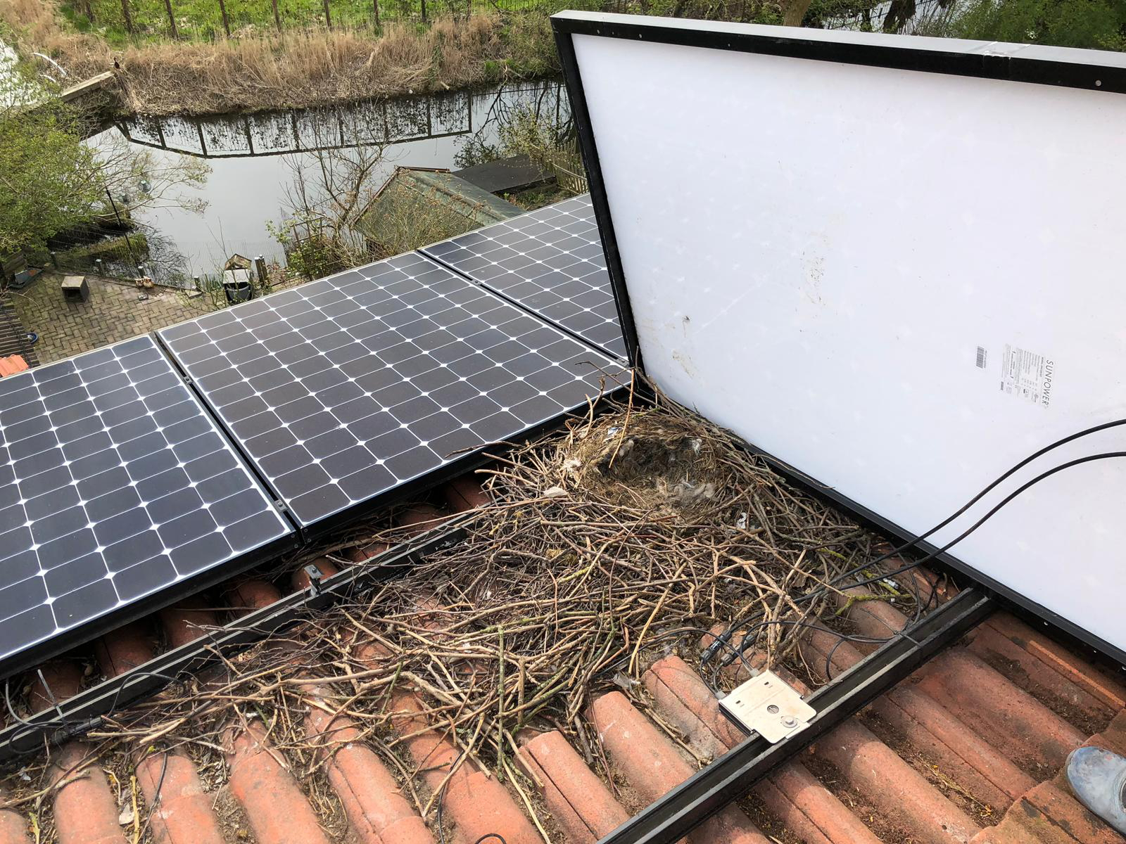 Rooftop PV panels need to be protected against birds, which can nest under an array, causing the output from the panels to decrease when the natural ventilation beneath the panels is restricted by twigs and other nest material. Image: Van der Valk Solar Systems