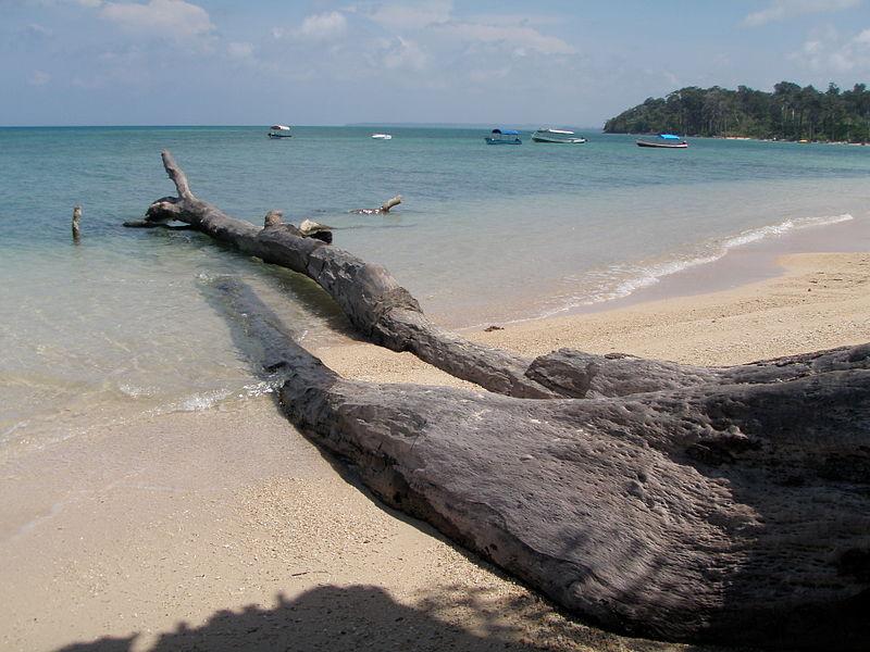 Andaman Islands, India. Image: wikimedia user Biswarup Ganguly