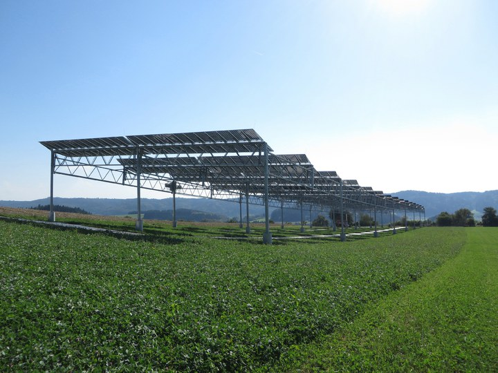 A unique 194 kWp agrophotovoltaics (APV) pilot plant has been built in Heggelbach near Lake Constance, in southern Germany, which will monitor the yield of four different crops (wheat, trefoil, potatoes and celery) under the APV system over the next two harvesting summers of 2017 and 2018. Image: Fraunhofer ISE