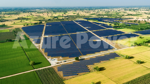 Azure Power plans to sign a 25-year PPA with SECI to supply power at a tariff of US 3.7 cents per kWh. Image: Azure Power