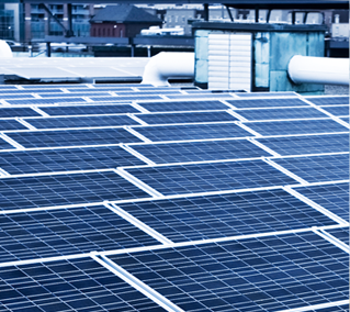 The 21.6MW PV project will be comprised of 65,455 solar panels and will generate 26,136 MWh of clean energy and offset 19,451 tons of carbon emissions per annum. Image: Grasshopper Solar