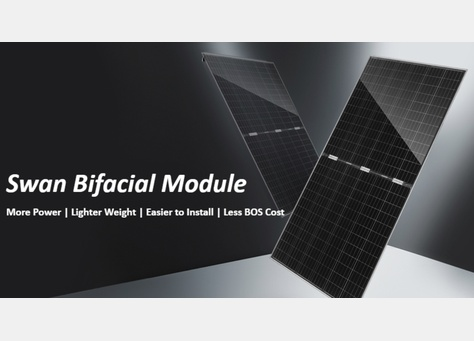 JinkoSolar's Swan module (pictured), however the module manufacturer his not disclosed which panels in particular will be used in this project. Image: JinkoSolar.