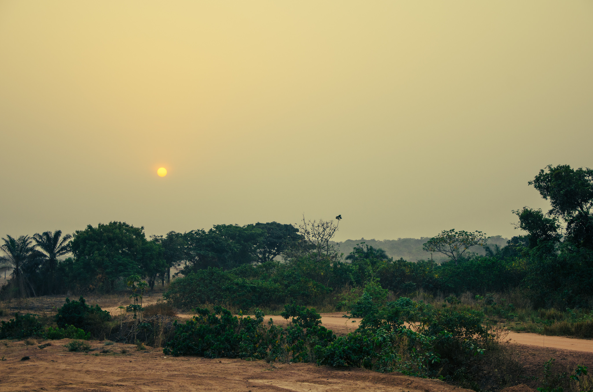 The Jigawa solar project will have an output of around 96GWh per year. Flickr/canonim