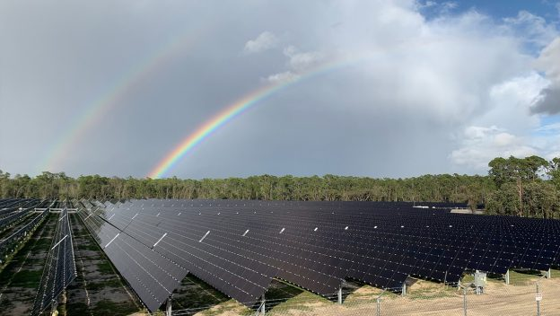 The project, located just outside of Disney's Animal Kingdom Theme Park, is comprised of about 500,000 solar panels. Image: Walt Disney Parks