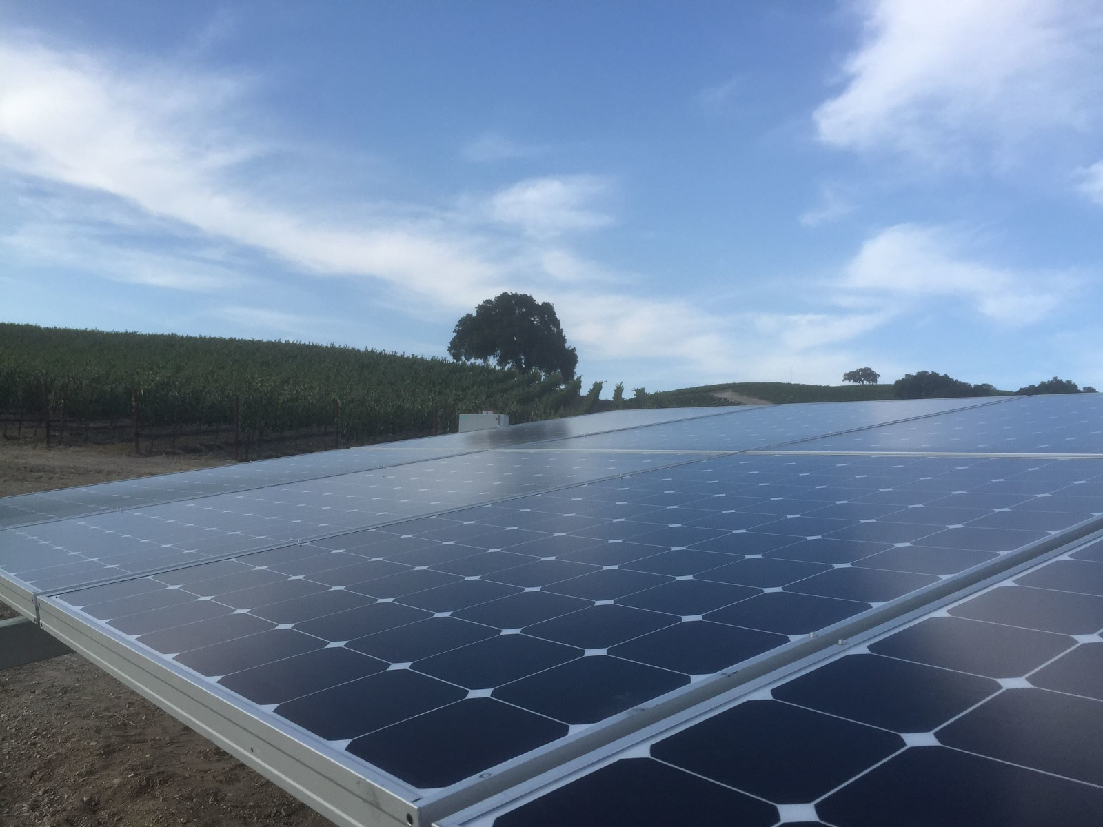 SunPower Corp is expecting to sell further assets and increase its loans in 2019 to avert bankruptcy due to looming liquidity issues as the company expects to remain loss making next year, while current net losses in the first nine months of 2018 have reached US$745.3 million.  Image: SunPower